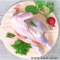 옛날통닭(B품)